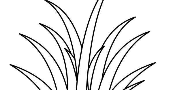 grass coloring images how to draw grass coloring pages color luna grass coloring images