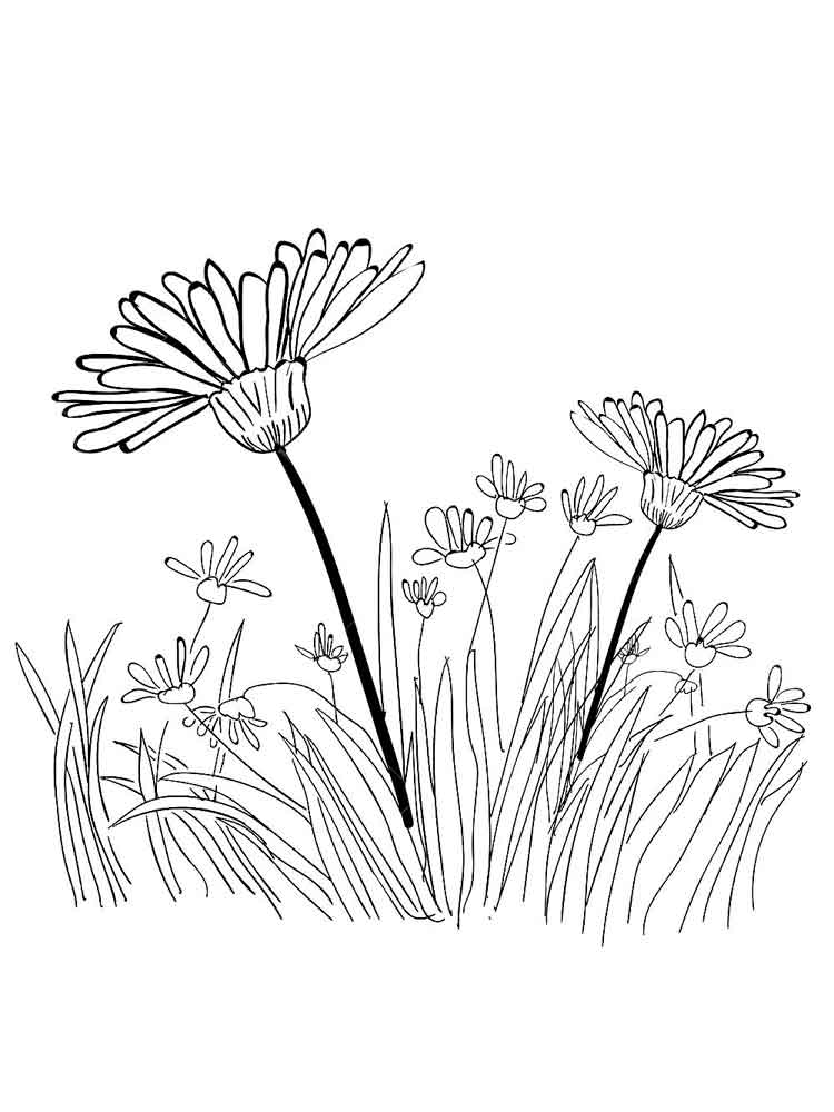 grass coloring images picture of grass coloring pages color luna coloring grass images
