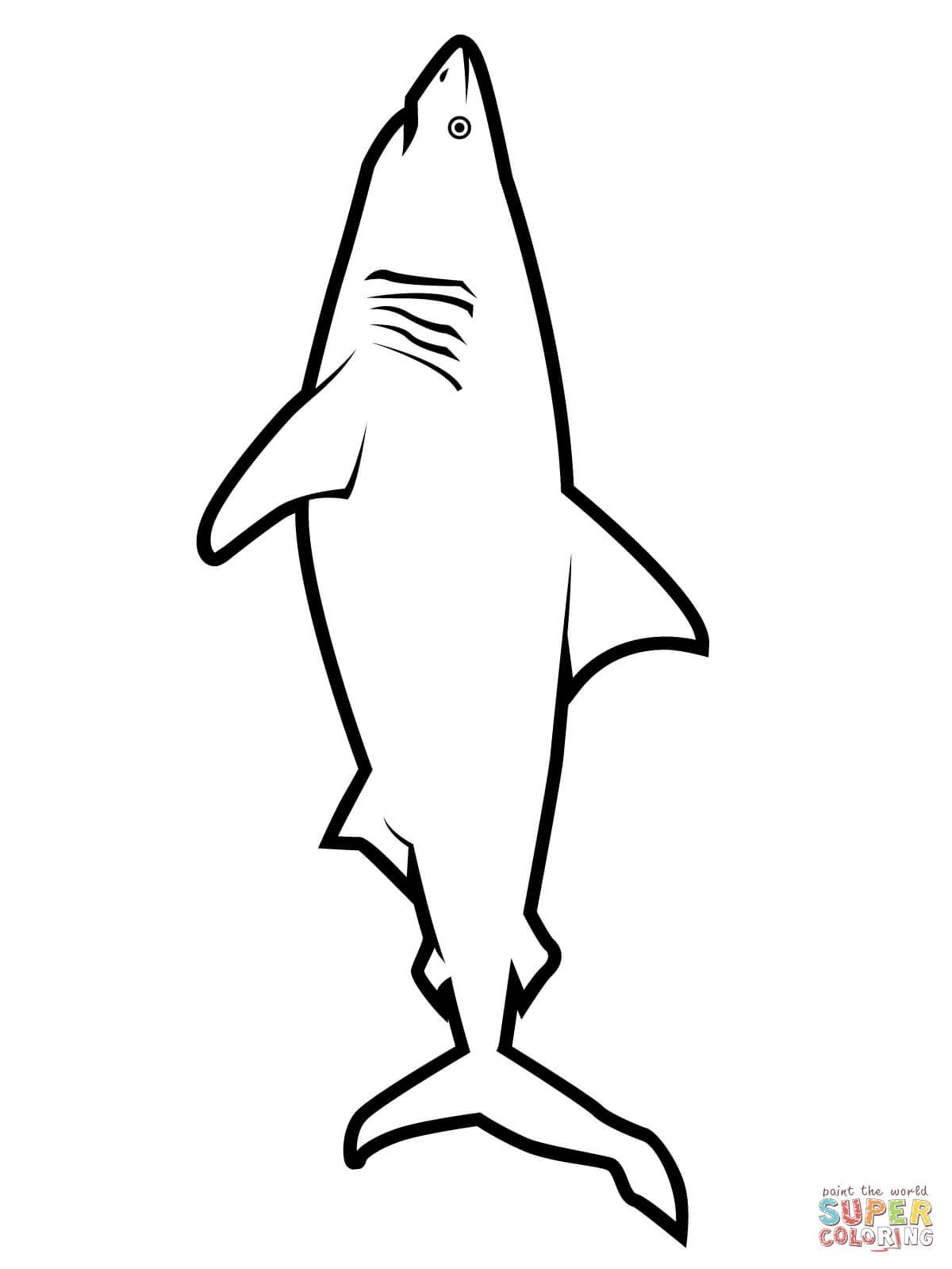 great white shark coloring sheet great white shark drawing at getdrawings free download coloring great sheet shark white