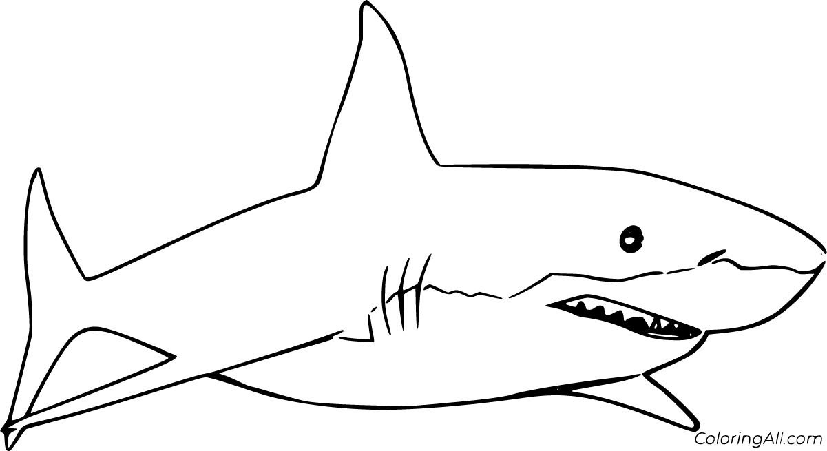 great white shark pictures to print great white shark coloring pages coloringall to print shark white pictures great