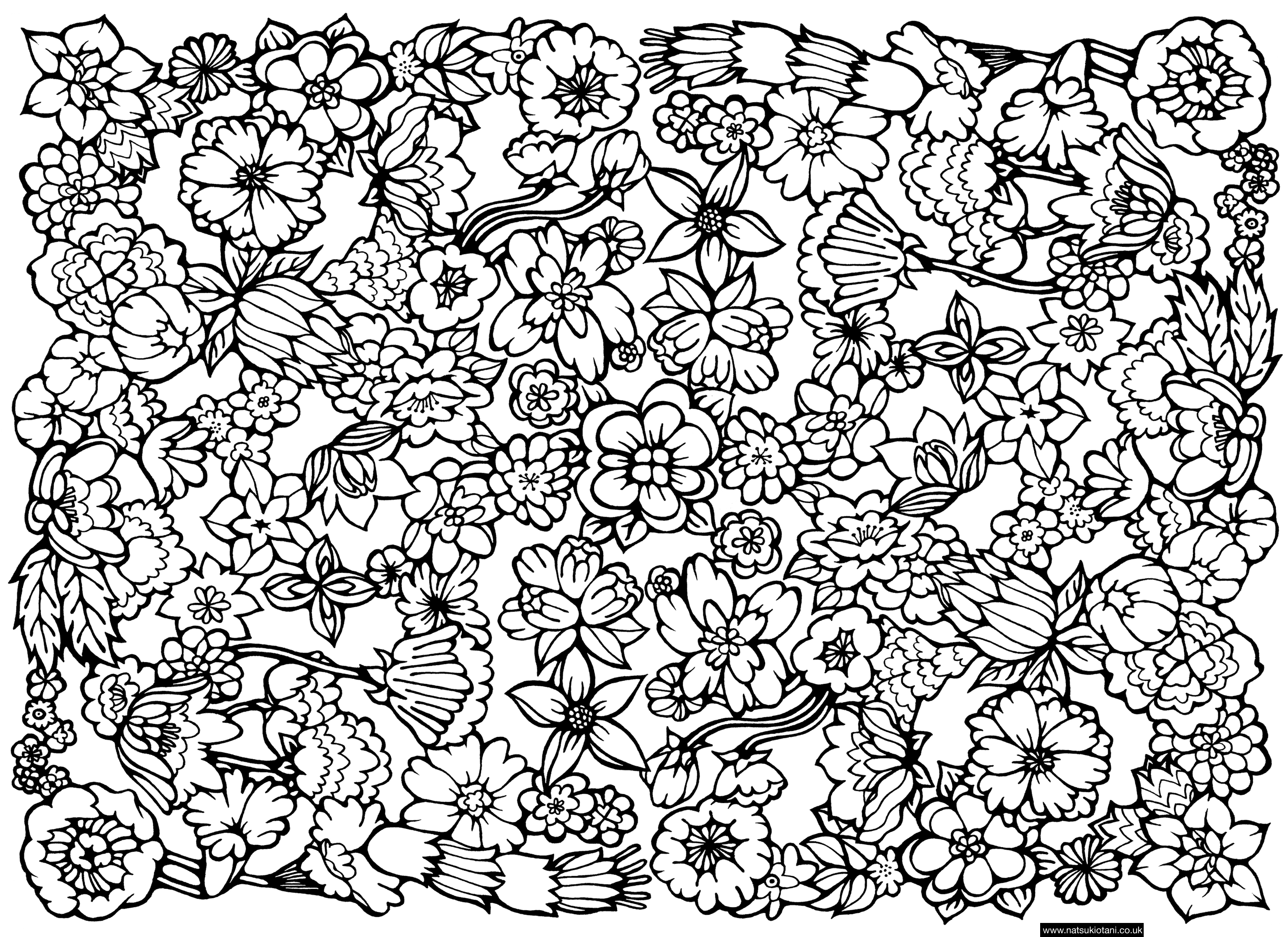 hard coloring pages for adults flower difficult flowers adult coloring pages coloring hard adults for pages