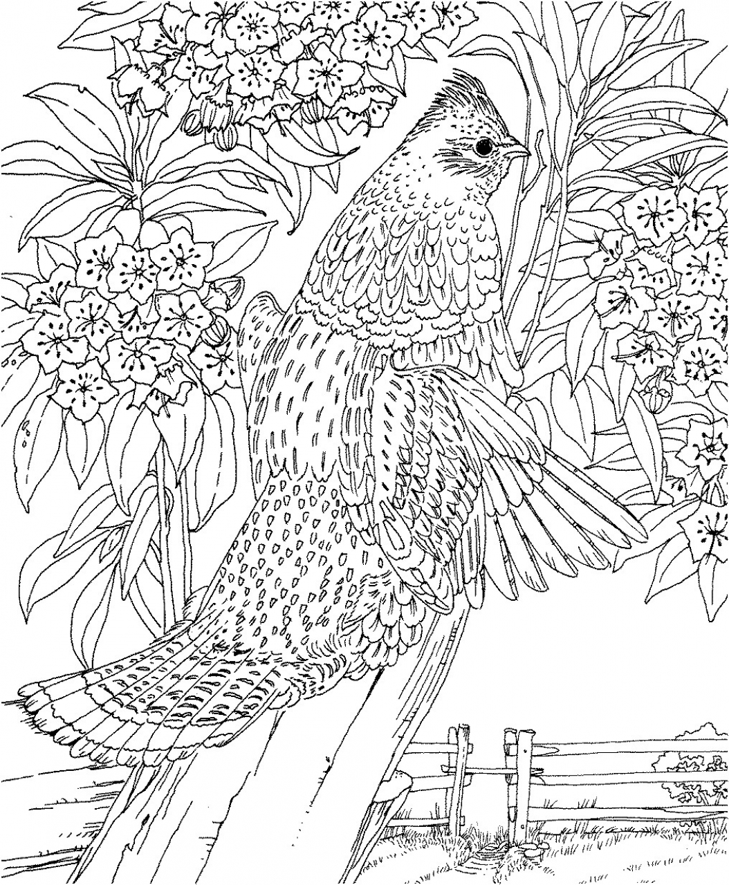 hard coloring pages for adults free printable abstract coloring pages for adults pages adults hard for coloring