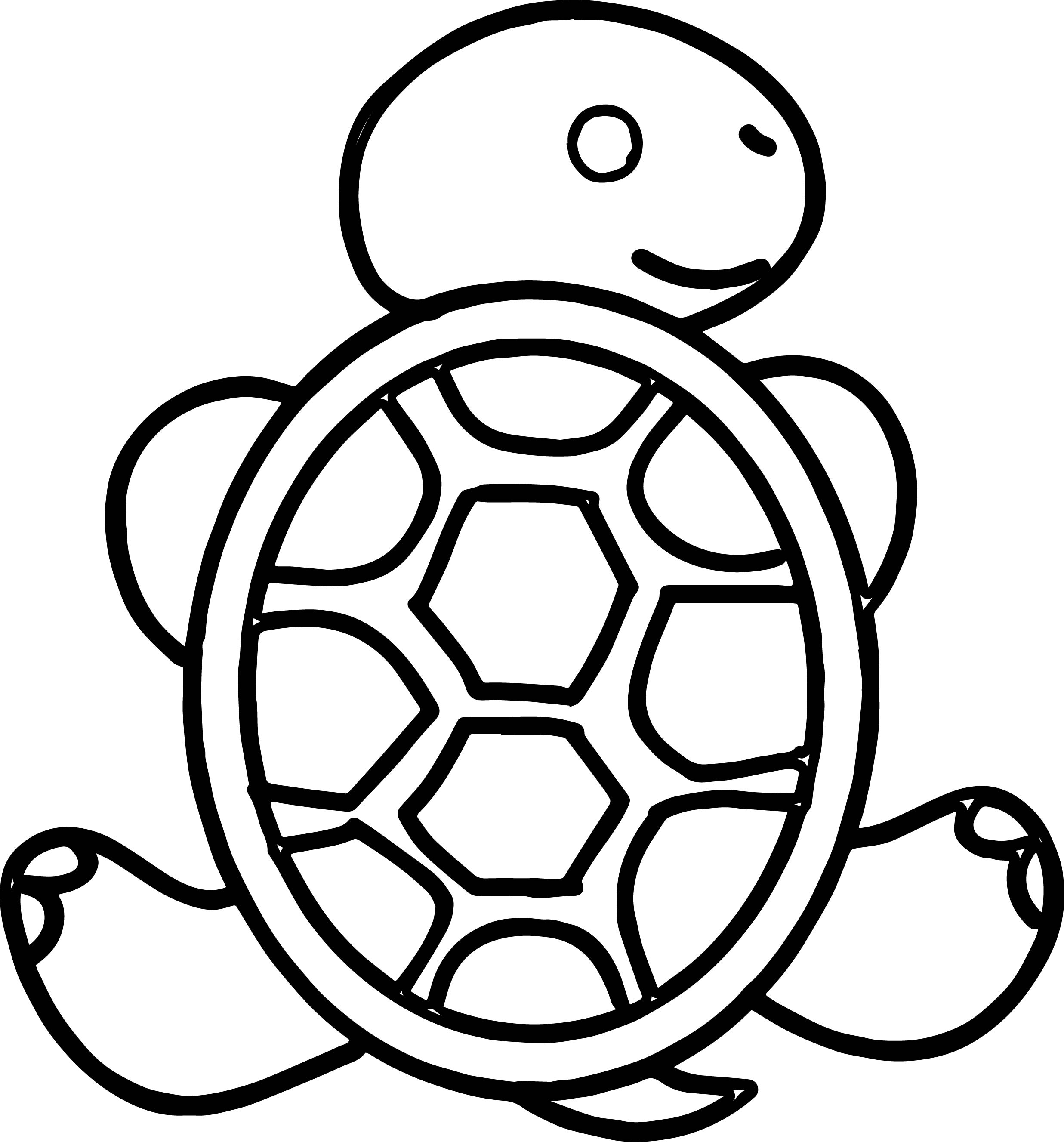 hawaiian turtle coloring pages pin on turtle coloring page coloring pages hawaiian turtle
