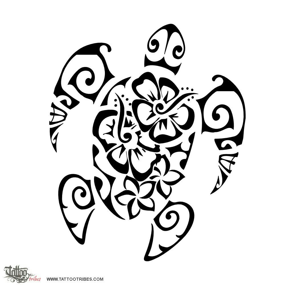 hawaiian turtle coloring pages snapping turtle drawing at getdrawings free download pages turtle hawaiian coloring