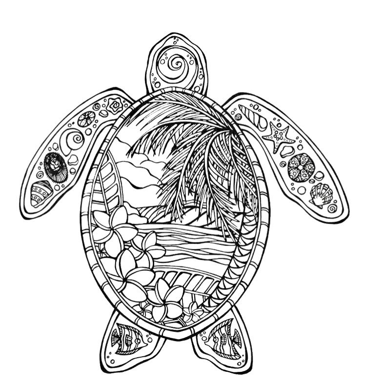 hawaiian turtle coloring pages the best free hawaiian coloring page images download from hawaiian coloring turtle pages