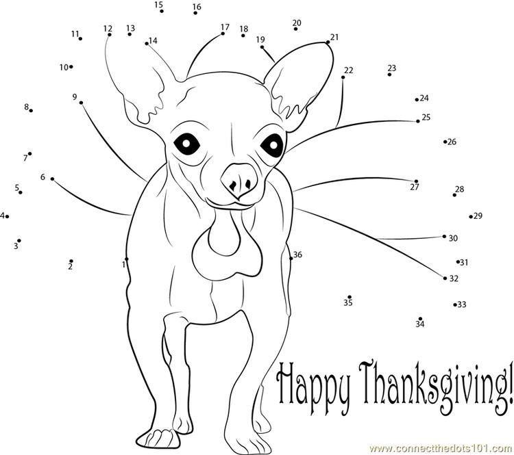 hedgehog dot to dot funny thanksgiving day connect dots dot dot hedgehog to