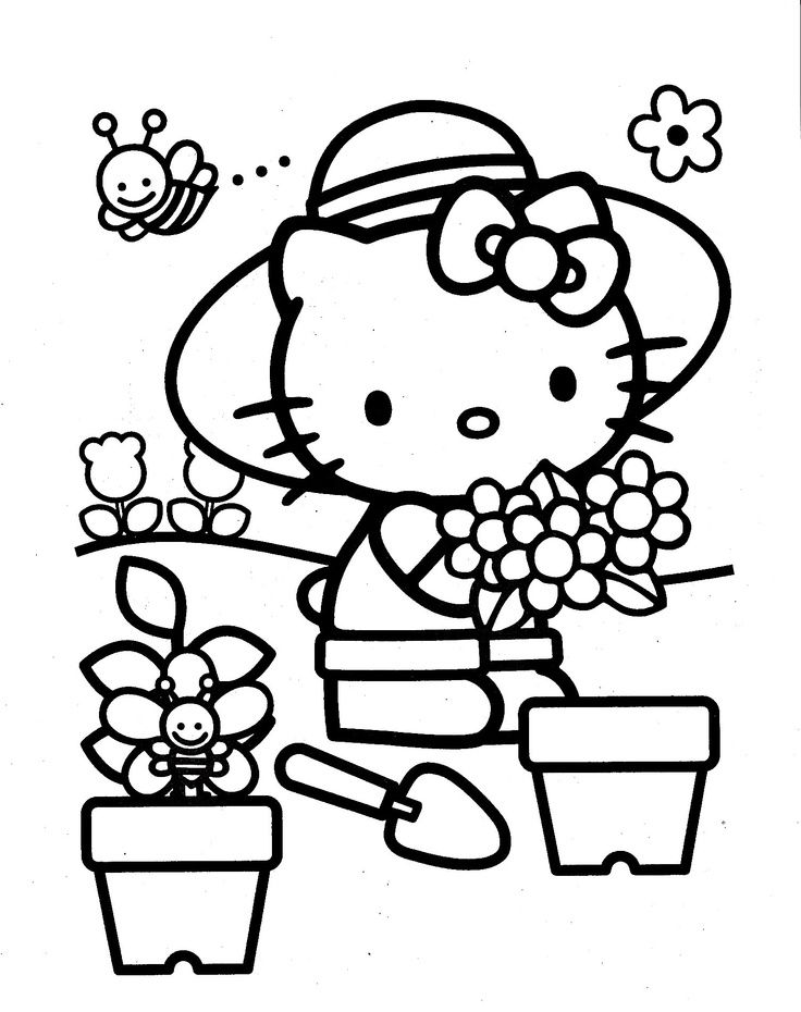 hello kitty dolphin coloring pages coloring activity pages quotdd is for dolphinquot coloring page kitty coloring pages dolphin hello