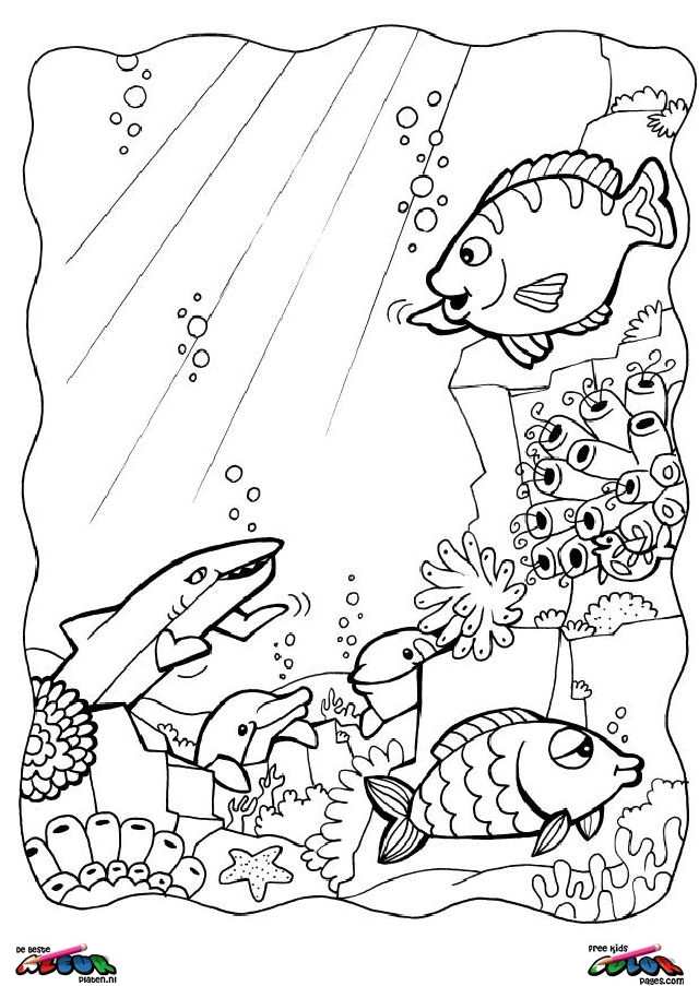 hello kitty dolphin coloring pages if you like this cute dolphin coloring page share it with pages dolphin coloring hello kitty
