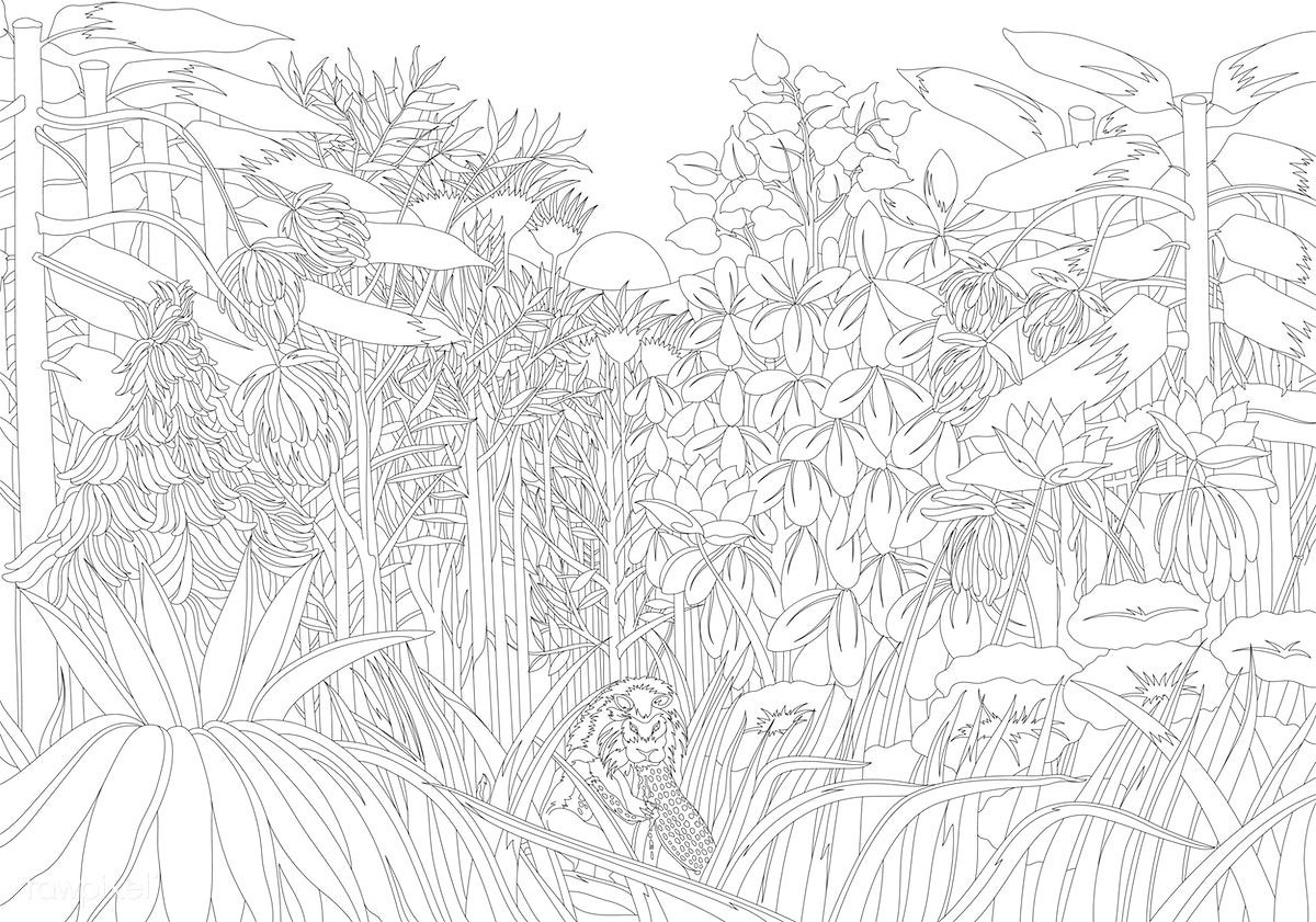 henri rousseau coloring pages the repast of the lion 1907 by henri julien rousseau rousseau pages coloring henri