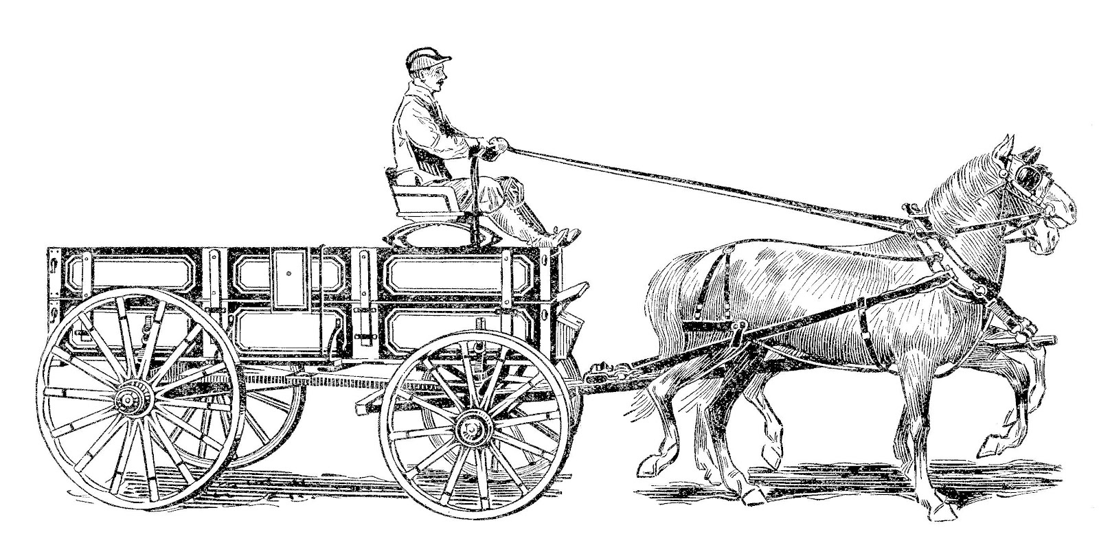 horse and buggy coloring pages horse drawn carriage drawing at getdrawings free download horse pages buggy and coloring