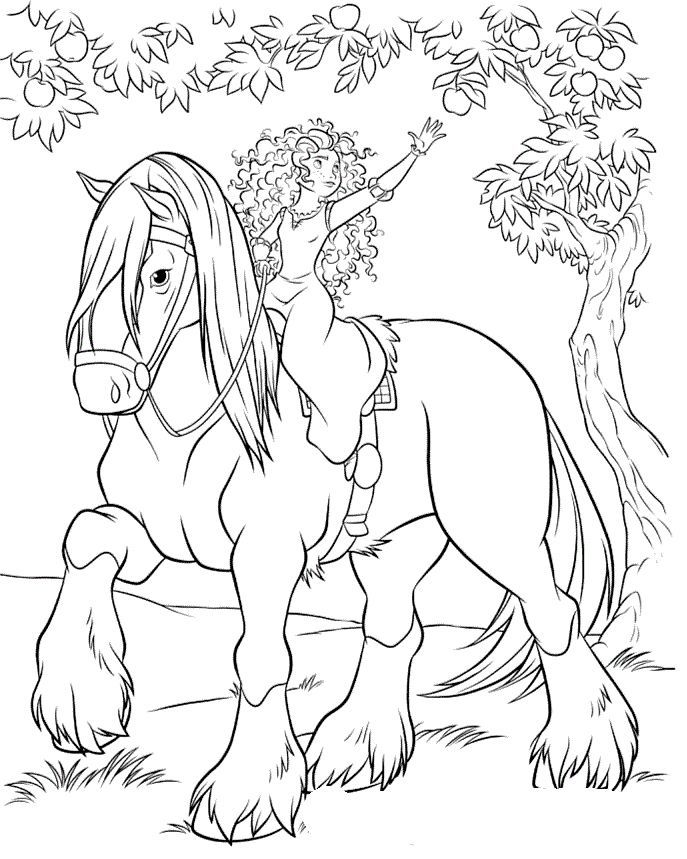 horse and rider coloring pages horseback riding drawing at getdrawings free download rider pages horse and coloring