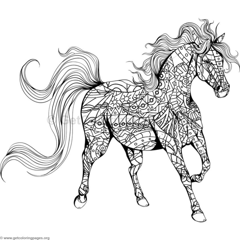 horse color sheet running horse coloring page free printable coloring pages horse color sheet
