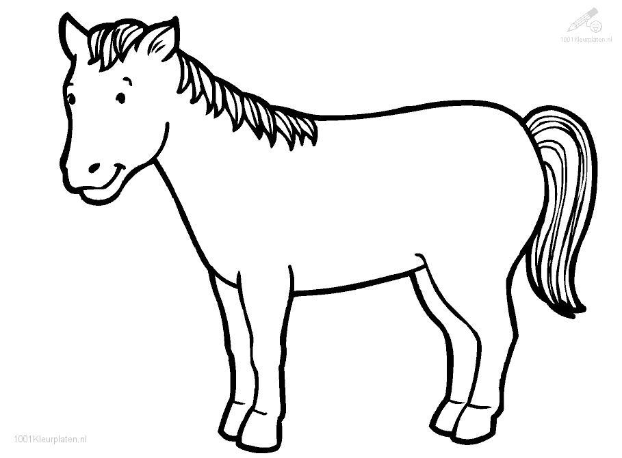 horse colouring picture free horse coloring pages for adults kids cowgirl magazine horse colouring picture