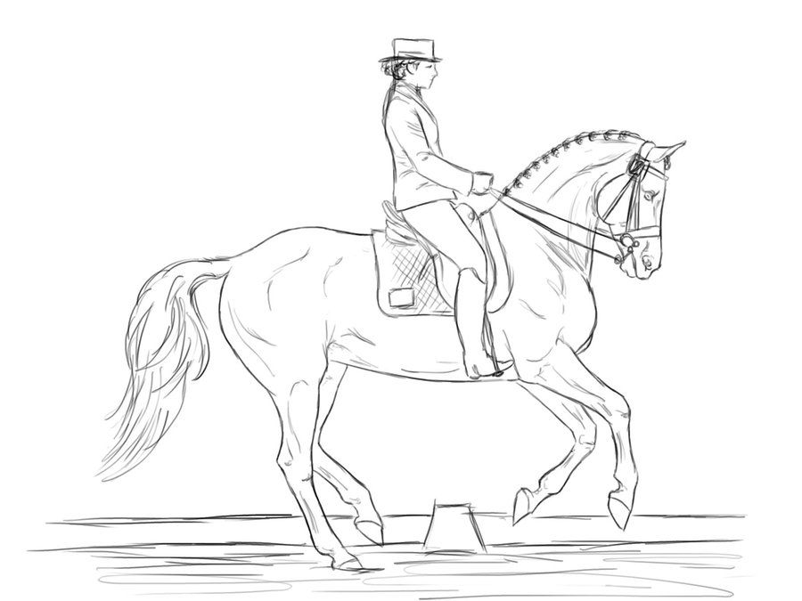 horse dressage coloring pages 60 best images about color horses competition on dressage horse pages coloring