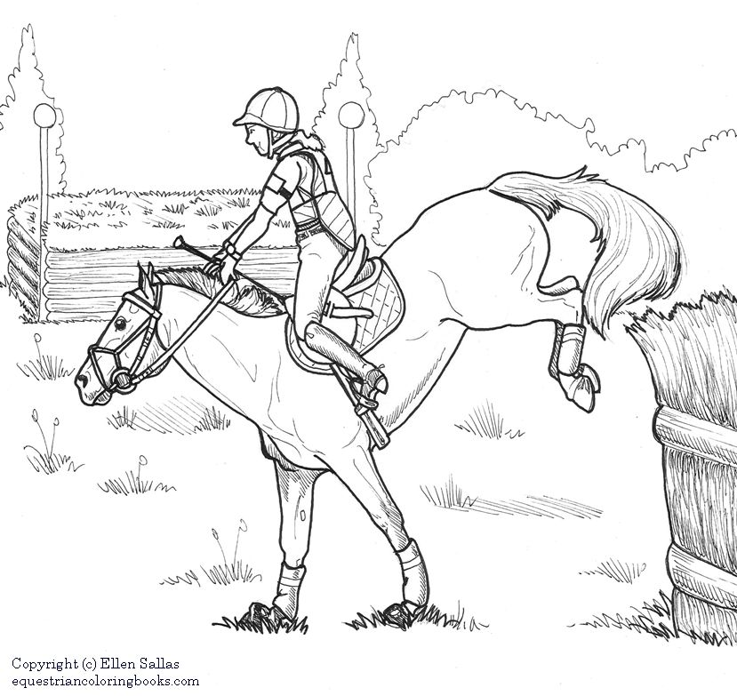 horse dressage coloring pages coloring pages for adults only dressage horse colouring horse coloring pages dressage