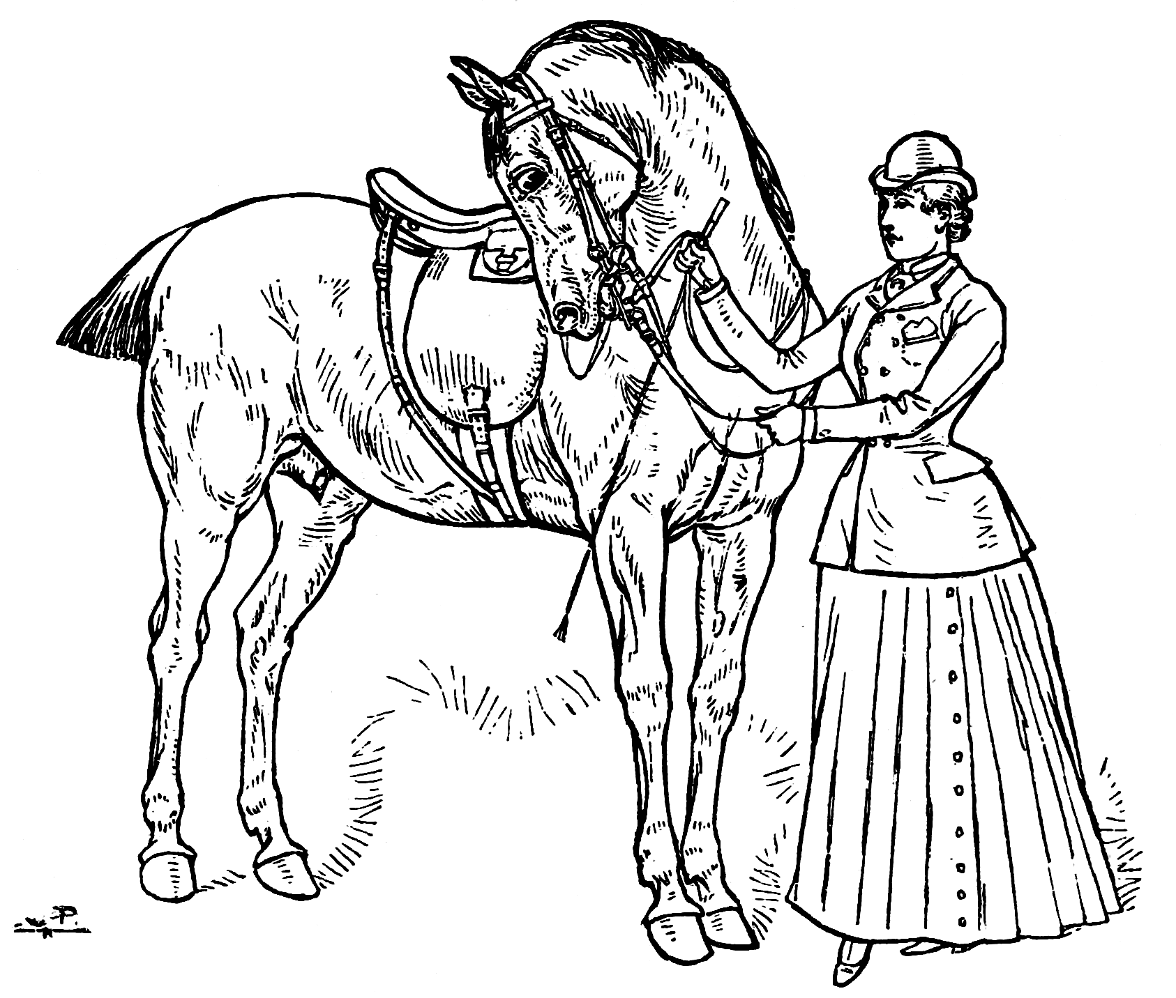horse dressage coloring pages dressage coloring pages at getcoloringscom free dressage coloring pages horse