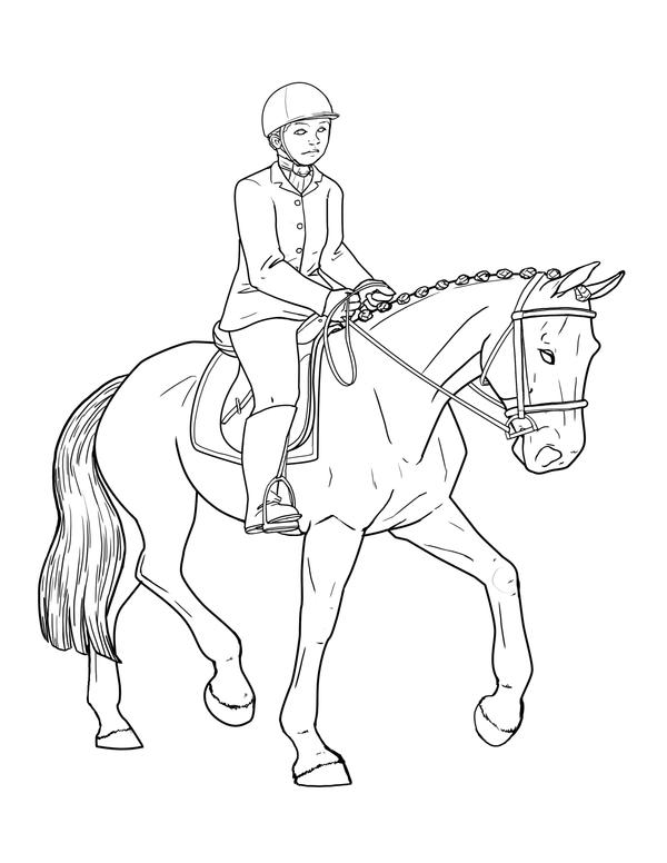 horse dressage coloring pages free horse riding lines by emmy1320 on deviantart pages dressage horse coloring