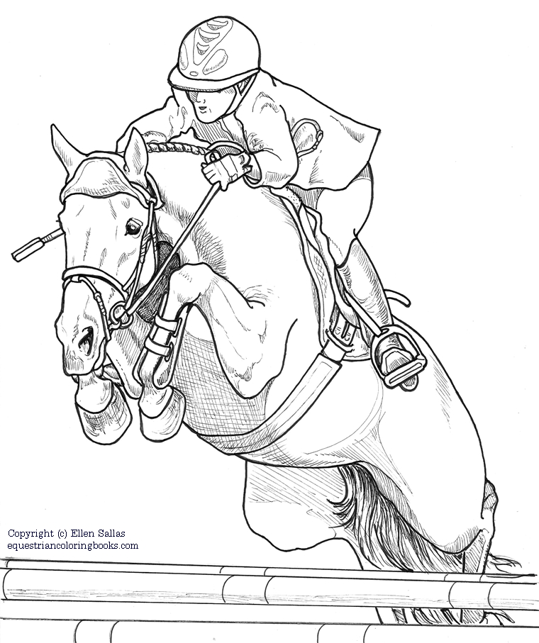 horse dressage coloring pages horsemanship for women coloring pages the equinest pages dressage coloring horse