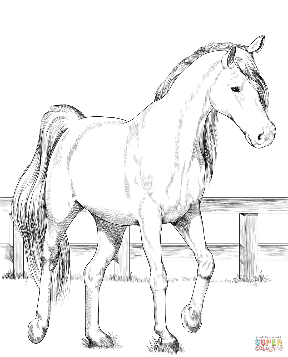 horse pictures to print baby horse coloring pages coloring pages for kids to print pictures horse