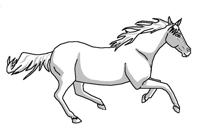 horse pictures to print free printable horse coloring pages for adults coloring home to print pictures horse