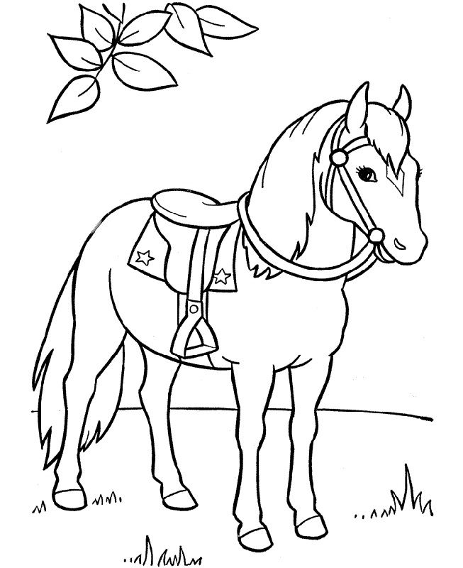 horse pictures to print horse coloring pages and printables horse print to pictures