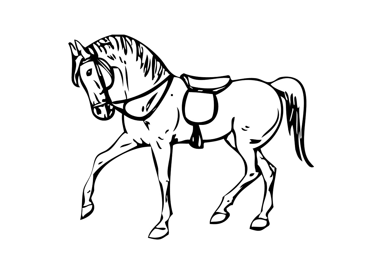 horse pictures to print horse coloring pages for adults best coloring pages for kids pictures print to horse