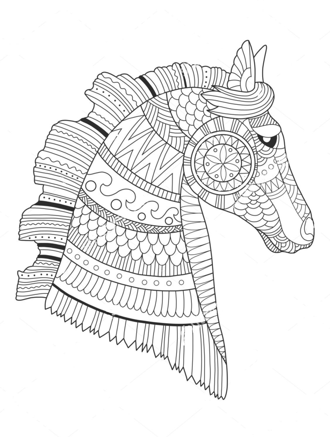 horse zentangle coloring pages zentangle horse sketch coloring page coloring zentangle horse pages