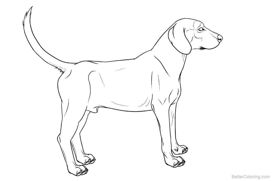 hound dog coloring pages basset hound coloring download basset hound coloring for pages coloring hound dog