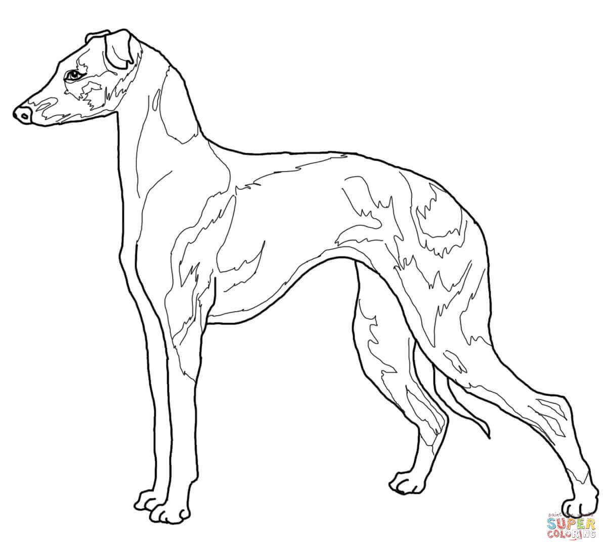 hound dog coloring pages dog breed coloring pages hubpages dog coloring hound pages