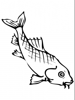 how do you draw a clown fish 68 best coloring fish images coloring pages adult you fish draw a clown do how