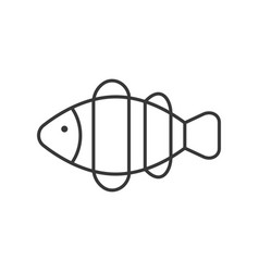 how do you draw a clown fish the best free anemone drawing images download from 133 you draw fish a do clown how