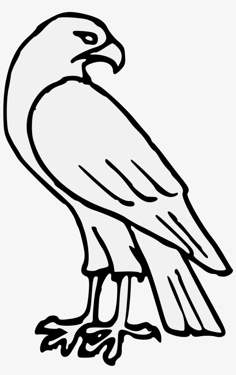 how do you draw a hawk easy hawk drawing free download on clipartmag do you draw hawk how a