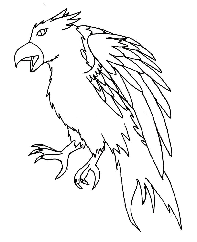 how do you draw a hawk flying hawk drawing at getdrawings free download you how draw do hawk a