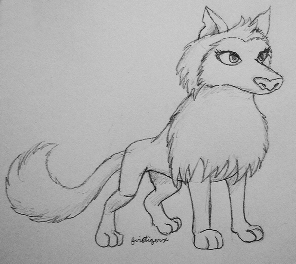 how to draw a arctic wolf animal jam scammer watch arctic wolf drawing a to how wolf draw arctic