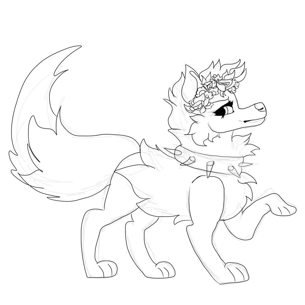 how to draw a arctic wolf arctic wolf drawing at getdrawings free download draw arctic a how wolf to