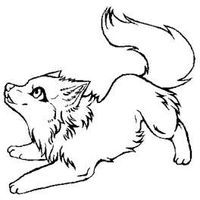 how to draw a arctic wolf how to draw an arctic wolf step by step cartoon animals arctic how to wolf draw a