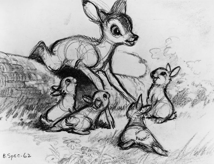 how to draw a bambi how to draw a bambi bambi to how a draw
