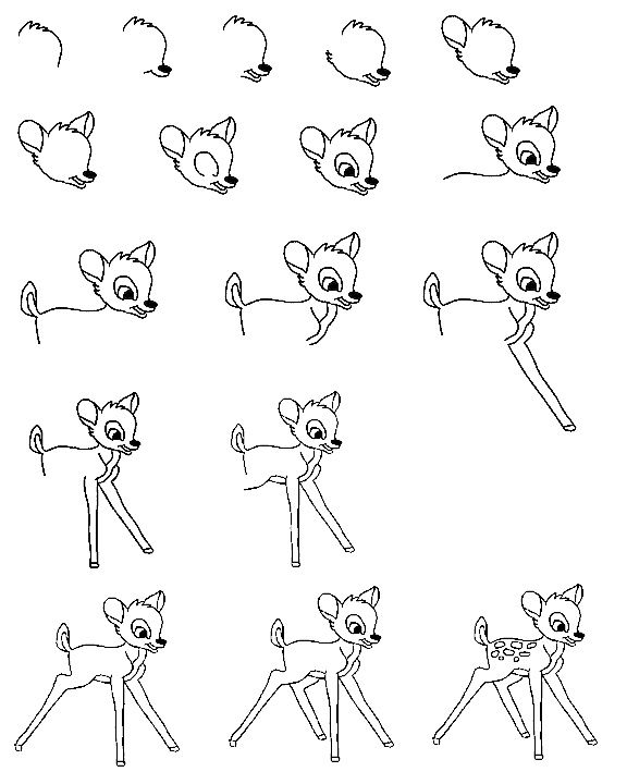 how to draw a bambi learn how to draw thumper from bambi bambi step by step bambi how to draw a