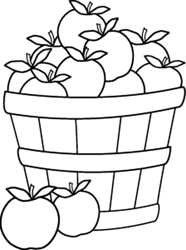 how to draw a basket of apples apples in harvest basket line art by lee hansen hoch apples draw of a how to basket