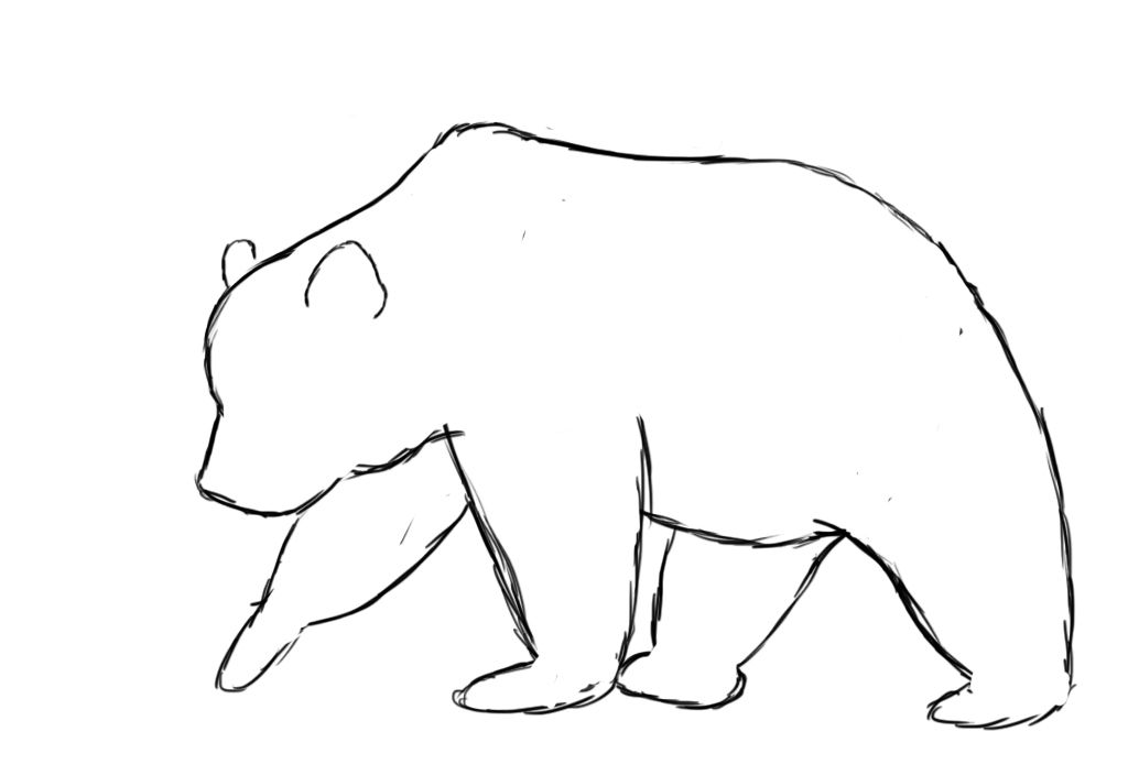 how to draw a black bear pin on drawings a black how to draw bear