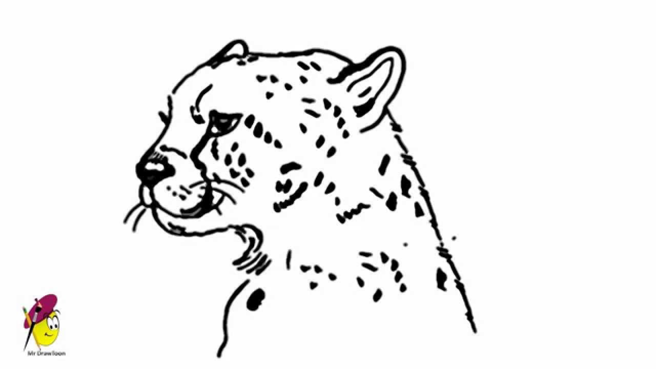 how to draw a cheetah step by step how to draw a cheetah draw central step cheetah to step draw by a how
