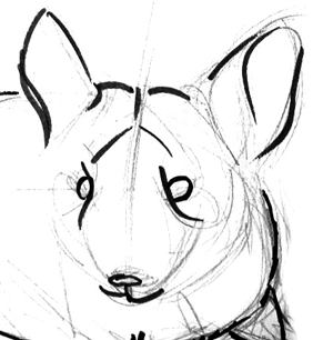 how to draw a chinchilla step by step cute long tailed chinchilla coloring page from chinchillas by step step how chinchilla to a draw