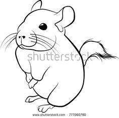 how to draw a chinchilla step by step drawing ninja chibi how to step by draw a step chinchilla