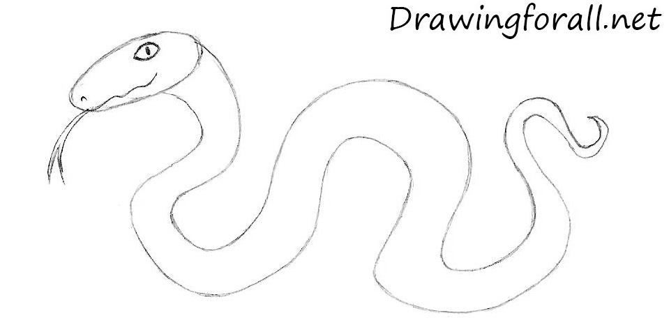 how to draw a cobra step by step how to draw a cartoon snake step by step draw cobra how to step a step by