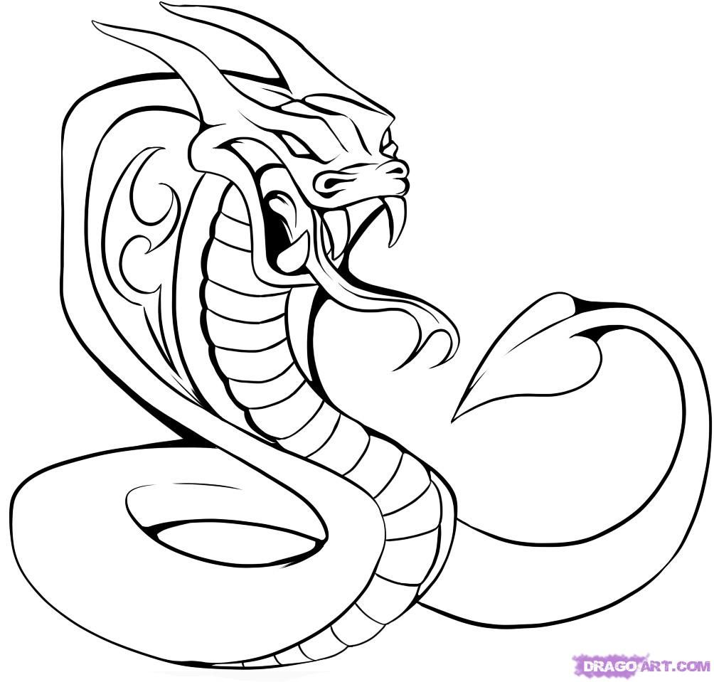 how to draw a cobra step by step how to draw a cobra step by step step by cobra draw how a step to
