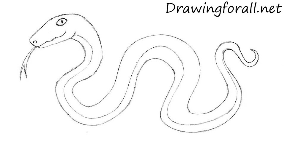 how to draw a cobra step by step how to draw cobra step by step arcmelcom by draw step how step to a cobra