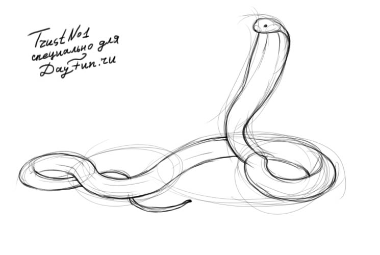 how to draw a cobra step by step learn how to draw a king cobra reptiles step by step step to step draw cobra by a how