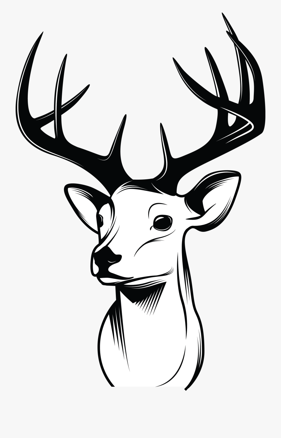 how to draw a deer how to draw a baby deer baby deer step by step forest a to draw how deer