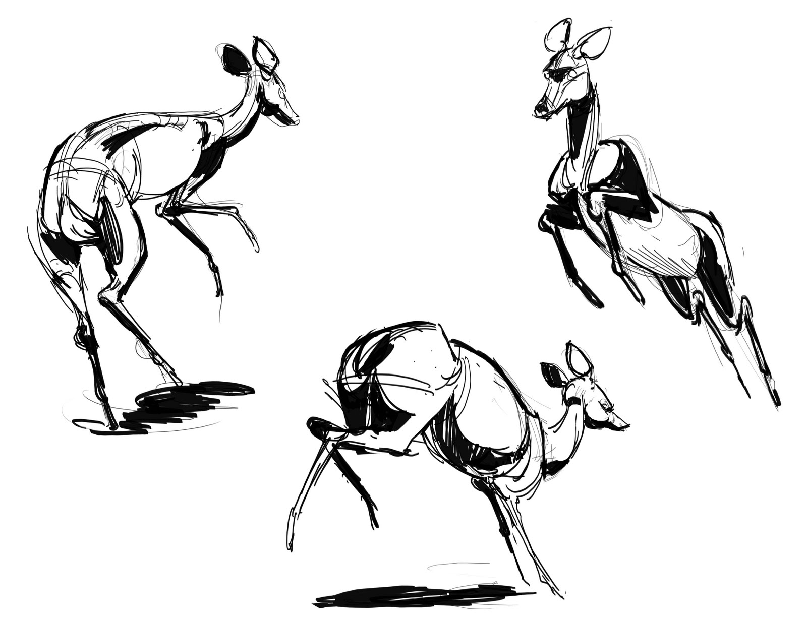 how to draw a deer how to draw a deer kid39s drawing ideas pinterest deer a how to draw