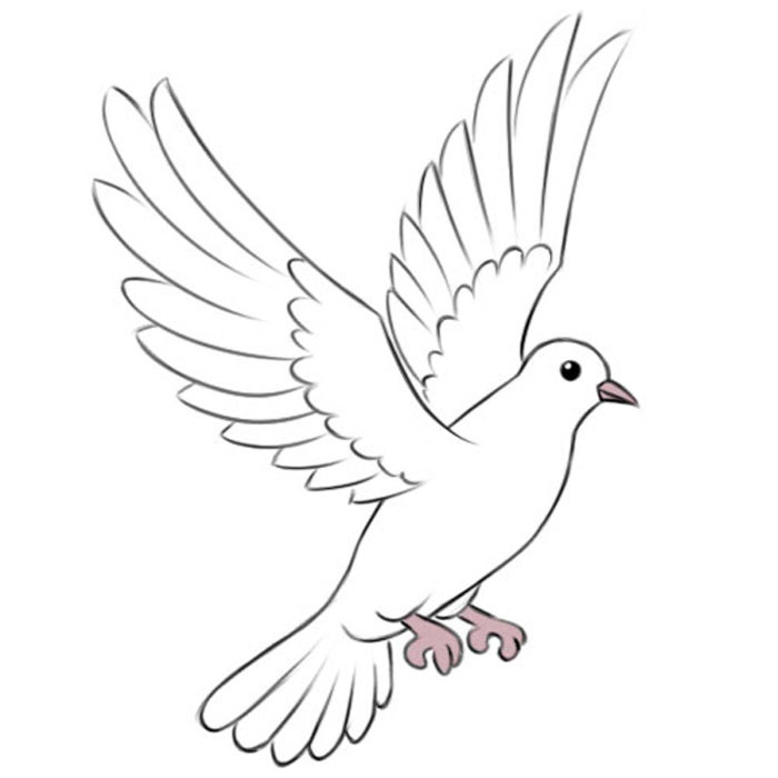 how to draw a dove easy how to draw how to draw a dove for kids hellokidscom how easy dove a to draw